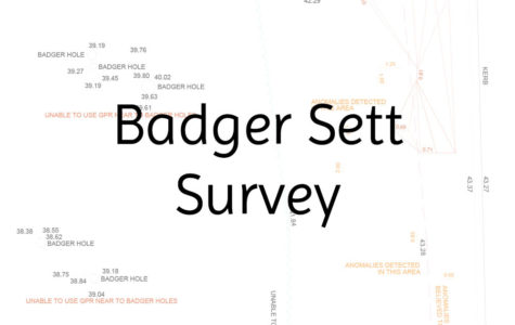 badgersettsurvey